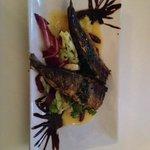 Amazing Sardine starter!