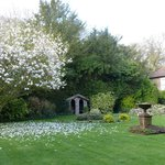 The beautiful gardens we used for our wedding photographs