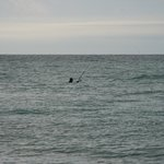 Fishing, Florida style, up to your neck in ocean!