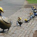 Marathon Ducklings complete with runner bibs