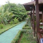 Giardini davani ai bungalw