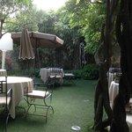 Terrasse /jardin verdoyant