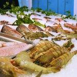 Fresh Fish Daily