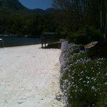 Lake Lure Shore in April