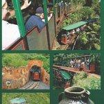 Brochure Driving creek Railway