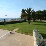 Garden, promenade