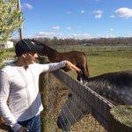 Mark feeding the horses