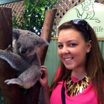 Meeting the Koalas at the Featherdale Wildlife Park