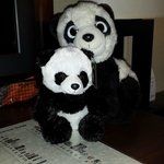 Only the small panda comes in the panda package!