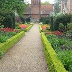fantastic flower beds