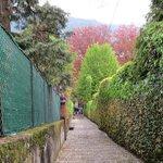 Discesa/salita del sentiero pedonale