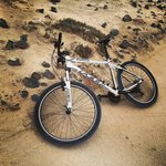 Rented MTBs from Life Cycles