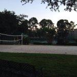 Basketball tennis volleyball