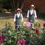 Hotel Gardeners