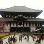 Todai-ji Temple Nara, near Wakayama