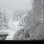 Una bella nevicata