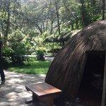 The peculiar but wonderful sauna