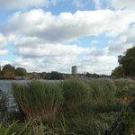 Hyde Park 3 (junto al Memorial de Diana)