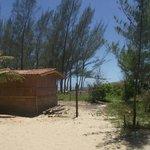 Bosque Beach