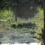 Agriristoro Podere S. Andrea Foto