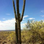 Gorgeous Sonoran Desert hiking is nearby
