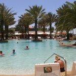Love the pool