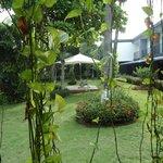vista dos jardins