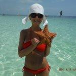 we found a starfish