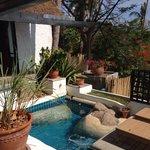 Pool Miltonia Villa