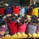 penguin jumpers for oil affected penguins - for sale for $25