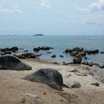 Beautiful rocks along the beach