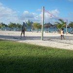 Le terrain de Beach