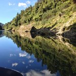 Wanganui River Reflections III