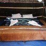 gute und breite Betten im Beduinenzelt