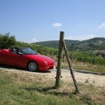 A spider is ideal for Chianti's hills. So you'll enjoy the sky too.