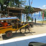 Horse and cart on Gili T