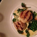Seared Scallops! Absolutely delicious!
