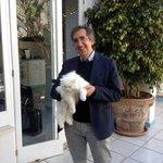 Renato Esposito e matisse, il gatto bianco del Hotel