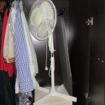fan in our wardrobe