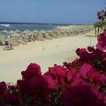 Spiaggia vista dai giardini
