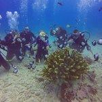 Cool fish & Coral