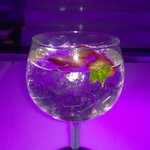 Best G&T's are server here
