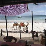 Вид из ресторана на пляж