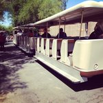 Tram tour available