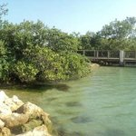 Sebastian Inlet State Recreation Area... fishing pier