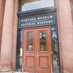Entrance to Natural History Museum