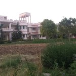 view of hotel from garden