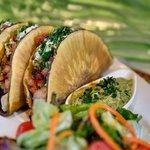 Fresh Catch Breadfruit Fish Tacos