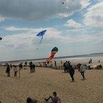 festival des cerf volants