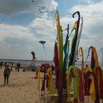 festival cerfs volants 2